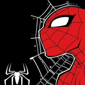 Camiseta de Spiderman mod.001