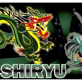 Taza Saint Seiya Mod.005 - Dragon
