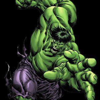 Camiseta de Hulk Mod.001